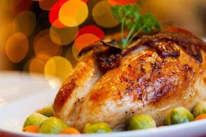 chicken close up dish food