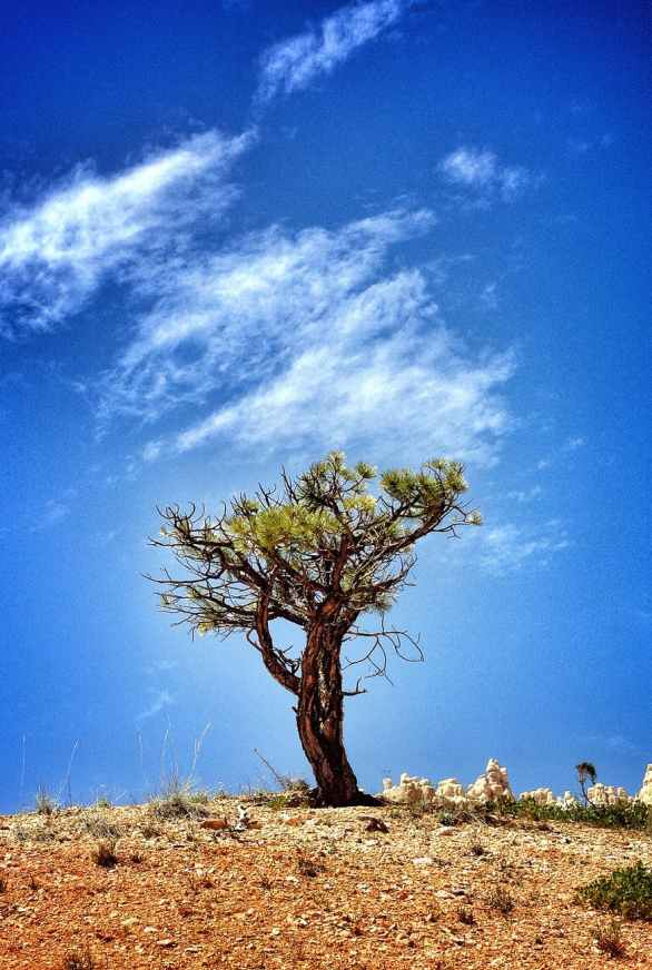 arid barren blue sky clouds